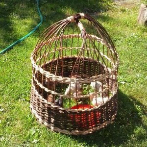 [:ro]Coșuri, pătuțuri pt. animale[:hu]Ágyak, kosarak állatoknak[:en]Baskets for animals[:]